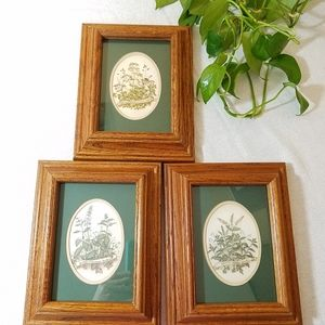 Vintage Herb Pictures, set of 3